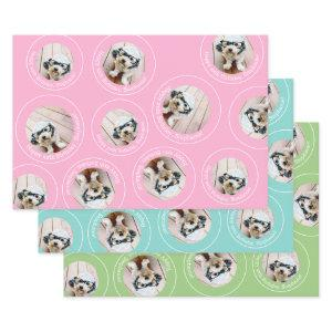 3 photo Collage Happy Birthday Circles pink blue Wrapping Paper Sheets