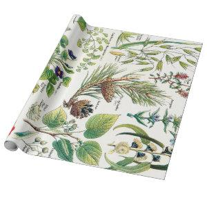 Botanical Illustrations Wrapping Paper