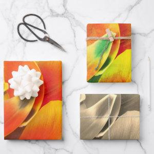 Colorful Variety Tulip Petal Photo All Occasion  Wrapping Paper Sheets