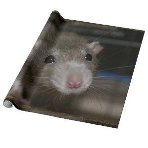 Curious Rat Wrapping Paper