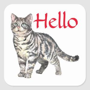 Cute Cat Hello Tiger Kitten Kitty Thinking of You Square Sticker