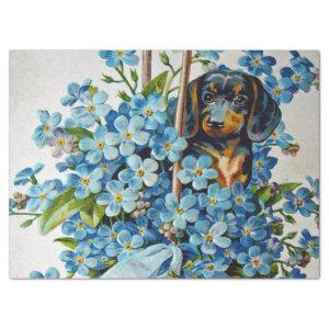 Dachshund and Forget-Me-Nots Tissue Paper