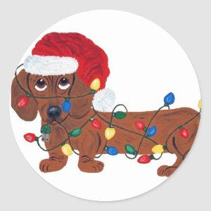 Dachshund Tangled In Christmas Lights (Red) Classic Round Sticker