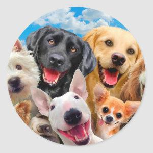 Dogs take group selfie classic round sticker