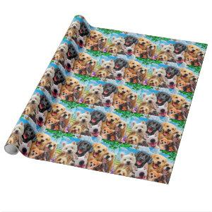 Dogs take group selfie wrapping paper