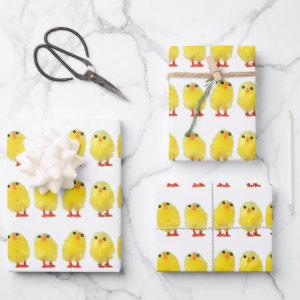 Easter Chicks Wrapping Paper Sheets