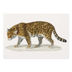 Elephant, Camel and Leopard by D'Orbigny Wrapping Paper Sheets