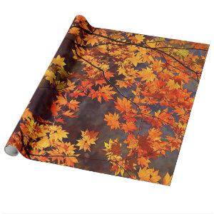 Fall Color Japanese Maple Leaves Wrapping Paper