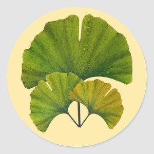 Ginkgo Leaves Classic Round Sticker