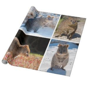 Happy and cute quokka of Australia Wrapping Paper