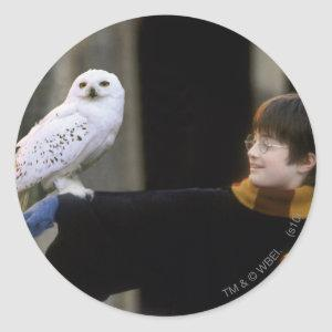 Harry and Hedwig 3 Classic Round Sticker