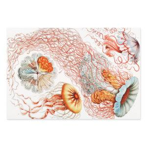 Jellyfish, Discomedusae by Ernst Haeckel Wrapping Paper Sheets