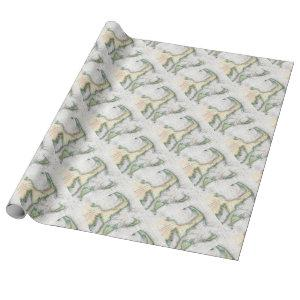 Map Cape Cod, Nantucket, Martha's Vineyard Wrapping Paper