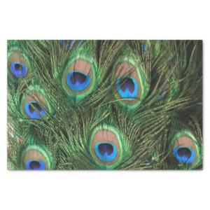 Peacock Feather Tissue Paper
