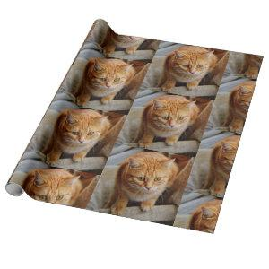 Pet Cat Dog Photo Personalize Custom Wrapping Paper