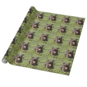 Pitbull In Grass Wrapping Paper