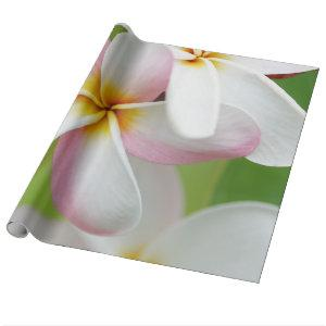 Plumeria Frangipani Hawaii Flower Hawaiian Flowers Wrapping Paper