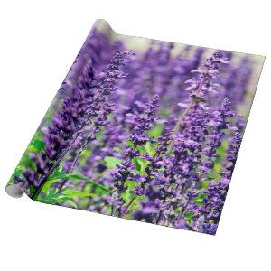 Purple Lavender Flowers Wrapping Paper