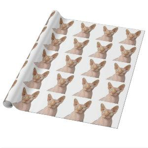 Sphynx cat gift wrapping paper