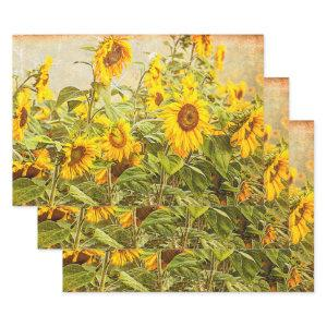Sunflower Field Decoupage Yellow Vintage Antique Wrapping Paper Sheets
