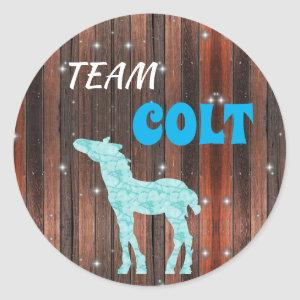 """Team Colt"" Colt Gender Reveal Classic Round Sticker"