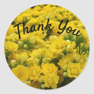 Thank You Appreciation Bright Yellow Flower Photo Classic Round Sticker