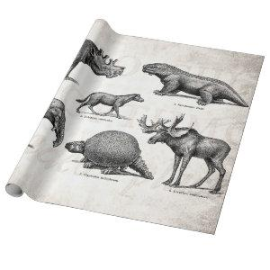 Vintage Dinosaur Old Illustration Retro Dinosaurs Wrapping Paper