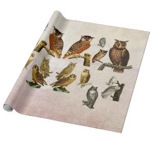 Vintage Owls Birds Wildlife animals Art Collage Wrapping Paper