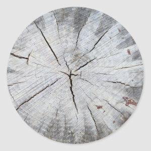 Wood Grain Gray Pine Tree Stump Photo Art 1 Classic Round Sticker