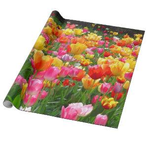 Yellow pink orange red tulips wrapping paper