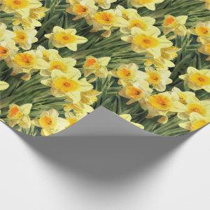 Yellow Spring Daffodils Wrapping Paper
